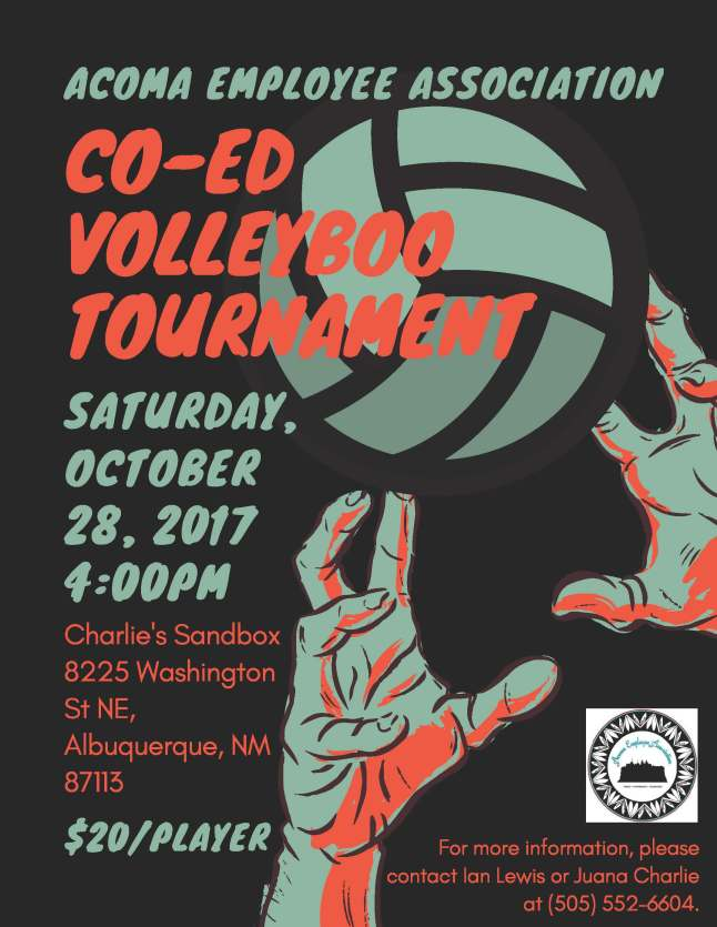 AEA Co-Ed Volleyboo Tournament.jpg