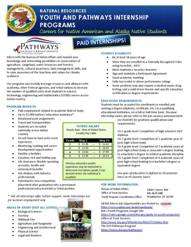 Pathways Flyer